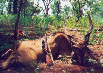 CazaAfrica15
