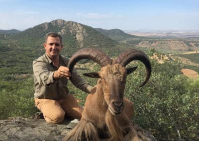 Arrui, caza en España