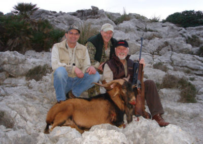 Boc, caza en España