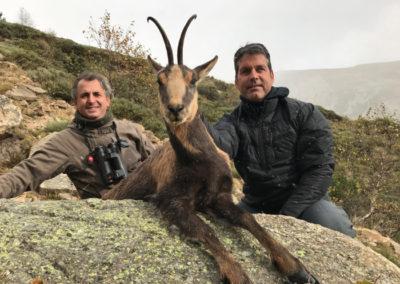 Rebecos, caza en España