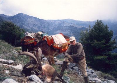 Sureste, caza en España